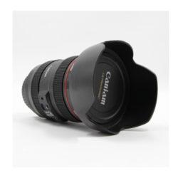 canon_lens_ef_24_105mm_f_4l_is_usm_bulk.jpg